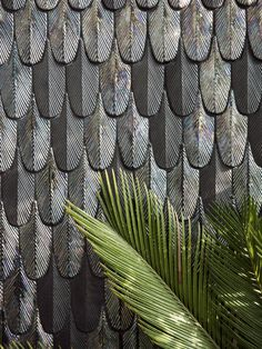 Interesting pattern, love the depth and texture Feather mosaic tiles by BottegaNove.