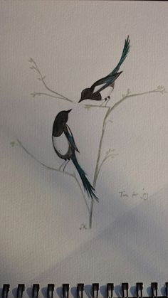 Two for joy magpies water colour. Painted for brother 's wedding invite.