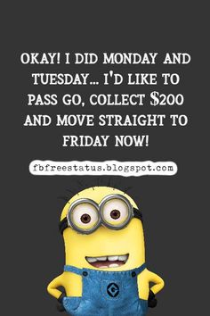 funny tuesday memes and funny tuesday morning quotes Happy Tuesday Meme, Happy Tuesday Morning, Tuesday Motivation Quotes, Huddle Board, Morning Quotes, Daily Quotes, Self Help, Motivational Quotes, Funny Memes