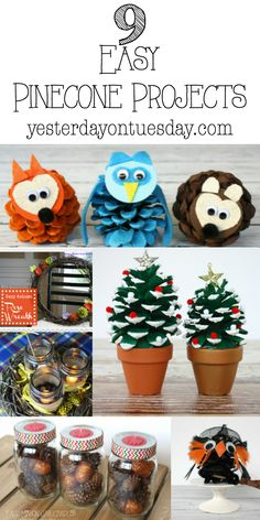9 Easy Pinecone Proj