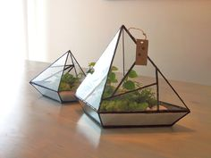 triangle mirror bottom terrarium