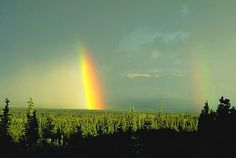 Google Image Result for http://www.alaska-in-pictures.com/data/media/13/denali-park-rainbows_1133.jpg