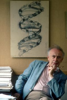 "James Watson- ""Today, the theory of evolution is an accepted fact for everyone but a fundamentalist minority, whose objections are based not on reasoning but on doctrinaire adherence to religious principles."""