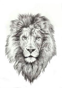 Best Lion Tattoo Collection - best tattoo - best tattoo for women - be Lion Head Tattoos, Mens Lion Tattoo, Leo Tattoos, Future Tattoos, Animal Tattoos, Body Art Tattoos, Tattoo Drawings, Tattos, Neck Tatto
