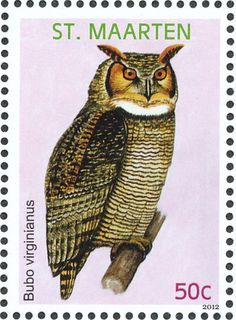 Great Horned Owl stamps - mainly images - gallery format