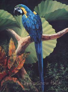 Laurie Snow Hein - Artiste Peintre Contemporaine - Huile - Lithographie - Perroquet II