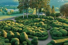 Great ideas for your topiary garden and where to go see topiaries. #ArchitecturalDigest