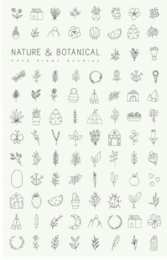 Hand drawn nature & plants doodles Hand drawn nature & plants doodles,a. Handlettering Hand drawn nature & plants doodles by Crocus Paperi – free good of the week Related posts:Unterarm Tätowierungen Ideen -. Doodle Tattoo, Kritzelei Tattoo, Doodle Drawings, Easy Drawings, Tattoo Drawings, Tattoo Sketches, How To Tattoo, Tattoo Quotes, Tattoo Flash