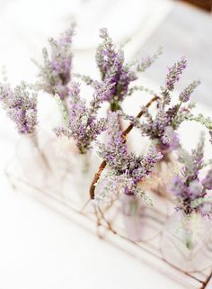 bits of lavender to soothe the senses