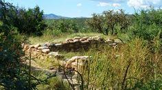 Tucson, Vineyard, Arizona, Clay, Outdoor, Clays, Outdoors, Vine Yard, Vineyard Vines