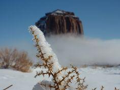 Avete mai visto un #deserto sotto la neve? Succede anche questo.