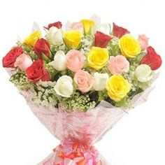 http://www.shop2vijayawada.com/lovely-multicolor-roses.html	Send This Fresh Multi Colour Roses To Your Dear Ones and Make Your Loved Ones Feel Fresh and Make Their Day Colourfull. Free Same Day Home Delivery Service Available thorugh our Shop2Vijayawada. Avail Midnight and Early Morning Home Deliveries.
