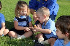 En el blog de #ColegiosISP encontraréis una selección de las fotos que recogen la actividad de observación de setas en P3 #InfantilISP . ¡Esperamos que os gusten! Enlace: http://colegiosisp.com/trabajando-otono-p3/