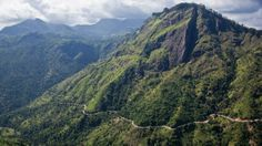Foodie paradise in Sri Lanka's hill country