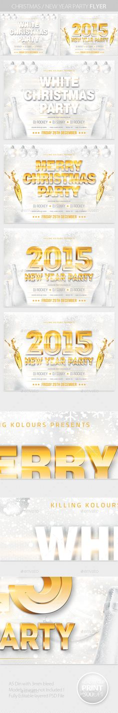 Christmas / New Year Party Flyer