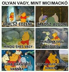 Jah, olyan vagyok. Bad Memes, Stupid Memes, Funny Fails, Funny Jokes, Lol So True, Disney Cartoons, Laughing So Hard, Funny Photos, More Fun