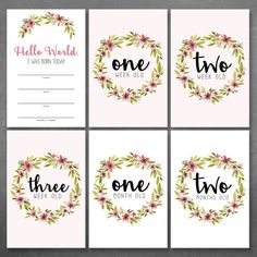 Floral Baby Milestone Cards Baby Month Cards by HeidiLynnCreations