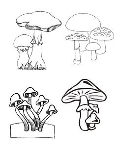 kleurplaat Herfst - Paddestoelen Coloring Books, Coloring Pages, Mushroom Crafts, Mushroom Drawing, Journal Template, Nature Journal, Science Nature, Art Drawings, Stencils
