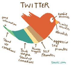 A Breakdown of the Various Types of Twitter Users