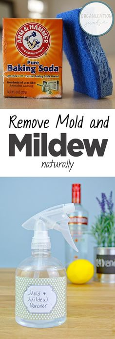 Remove Mold and Mildew Naturally| Mold Removal, How to Remove Mold and Mildew, Natural Cleaning, Natural Cleaning Recipes, Cleaning, Cleaning Tips and Tricks #Cleaning #MoldandMildew