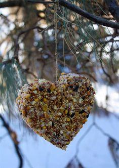 Homemade Heart Birdfeeder
