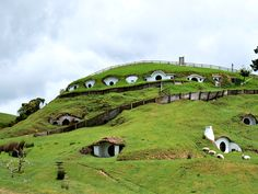 Hobbiton-Matamata-New-Zealand-hobbit-house