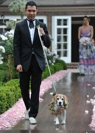 """""""Just keep walking straight pal"""", says the dog to the guy!"""