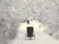 Amish wonderland