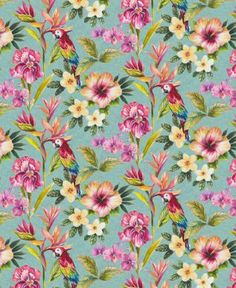 Bird of Paradise  - Teal : Wallpaper and wallcoverings from Holden Decor Ltd.