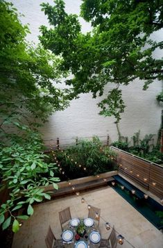 West 11th Street Townhouse: Urban Garden: An urban garden is comprised of Jerusa