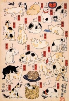 Utagawa Kuniyoshi 歌川国芳 - Ukiyo-e. Asian Cat, Gatos Cat, Japanese Cat, Vintage Japanese, Art Asiatique, Maneki Neko, Neko Cat, Japanese Prints, Japanese Poster