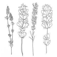 Resultado de imagem para tatuagens lindas botanical