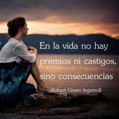 #lecciones de vida, en la vida no hay premios ni castigos solo consecuencias