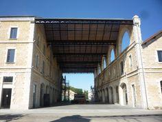 Project Darwin in Bordeaux