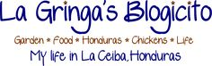 La Gringa's Blogicito - great articles on current events, cooking, gardening, and living in Honduras.