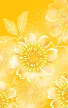 Golden Chrysanthemum yellow flower. my birth month flower and favorite color