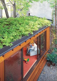 This container house has a living roof--of ferns! | Photo Alexi Hobbs House Container | Tiny Homes