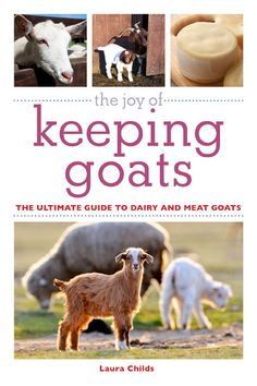 Bringing a goat into your life will lead to endless delight at their antics and a wealth of opportunities to turn a profit. Whether you're i...