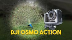 Ce stie sa faca noua camera video de actiune DJI Osmo Action (review in ... Dji Osmo, Gopro, Action, Group Action