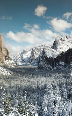 Yosemite National Park | Travel | Vacation Ideas | Road Trip | Places to Visit | Yosemite National Park | CA | National Park | Nature Reserve | Forest | Hiking Area | Tourist Attraction