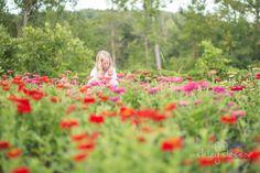 #farmerflorist #flowerfarm Deep in the Zinnias in August. At Dahlia May Flower Farm Image by @AshleySlessor