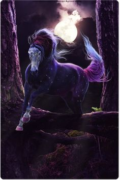 For Eponine by Weathered-Raven on DeviantArt Funny Horses, Cute Horses, Pretty Horses, Mystical Animals, Mythical Creatures Art, Beautiful Dark Art, Most Beautiful Horses, Unicorn Fantasy, Unicorn Art