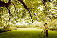 "Irish Wedding Poem, ""The Lark in The Clear Air"" - Howerton+Wooten Events"