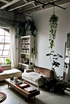Love the entire feel of this room - the hanging plants, large windows (could do without the dead thing on the back of the couch though)