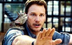 Someone replaced all of the dinosaurs in Jurassic Park with cats. Good.