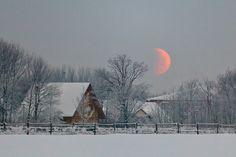 love this moon
