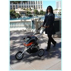 26 Best Pet Strollers For Small Dogs Images In 2013