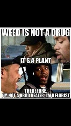 Offensive humour is all about offensive jokes, dark humor, funny memes and I am going to hell for this. 420 Memes, Memes Humor Negro, Funny Quotes, Funny Memes, Weed Quotes, Dankest Memes, Funniest Memes, 420 Quotes, Bullshit