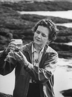 Rachel Carson was considered a biologist but her seminal book Silent Spring (1962) was fundamental to the science of environmental chemistry. In it she sounded an early warning of the effects chemical processes and products would have on our ecosystem.
