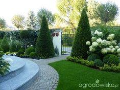 Danusia - Ogród nie tylko bukszpanowy cz.III *** Część II ...